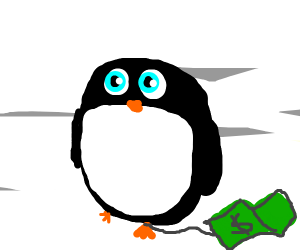 buying a penguin