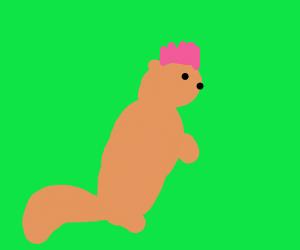Even dead, the squirrel has a sick mohawk