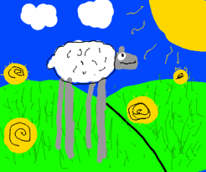 Sheep with tall legs roams country