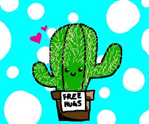 Happy cactus offers free hugs