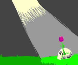 plants have outgrown old skulls