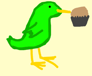 Green bird eating muffin