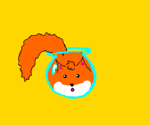 fox in a fish bowl