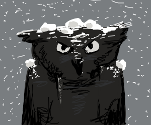 The snowiest of owls