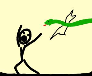 flying snake chasing man