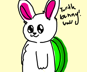 Turtle-bunny! he is a rabbit with a shell!