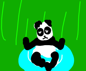 Panda bear meditating and floating on water