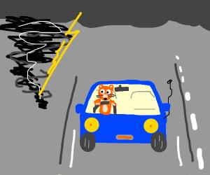 cat drives away from tornado!!