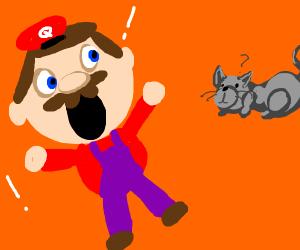 Bootleg mario hates mice