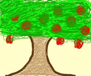 Eleven Apples on an apple tree