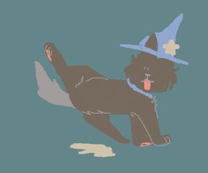 Dog Wizard Had Peed
