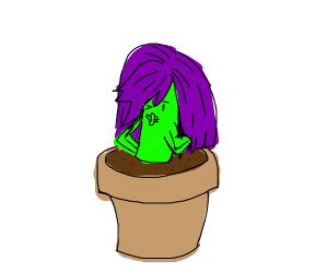 Plant wearing a purple wig