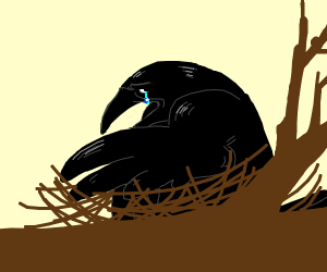 Crying crow