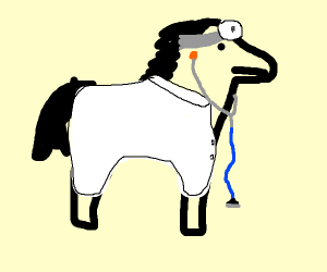 doctor pony