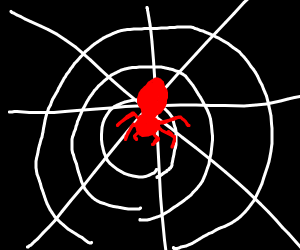 red spider on web