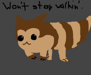 what do you mean? Furret's always walk!
