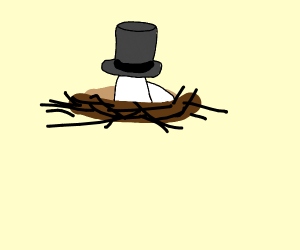 Nest wearing a Top Hat