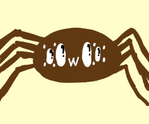 spider makes this face: oOwOo