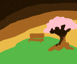 bench on a hill with sunset behind