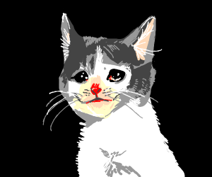 Sad red-nosed kitten