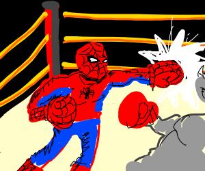 Box Spider