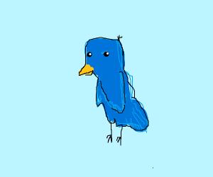 A lovely blue bird