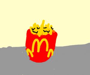 McDonald's F(ur)ries