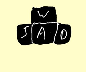 WASDWASDWASD
