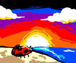 ladybug enjoying a beach sunset