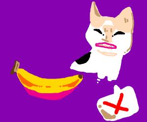 banana calico