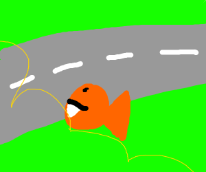 Piranha crossing the Road