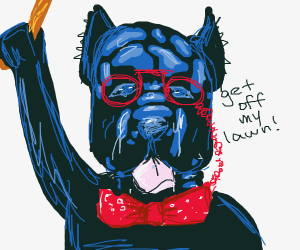 Old dog pops with glasses and cane