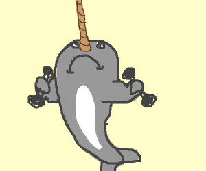 narwhal lifting weights
