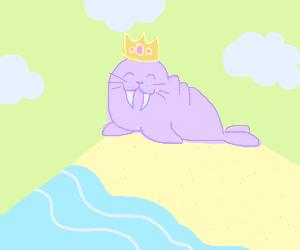a king walrus