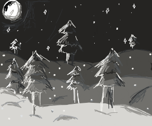 Snowy forest at night