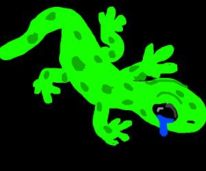 sad gecko