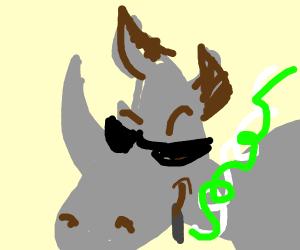 Cool Rhinoceros
