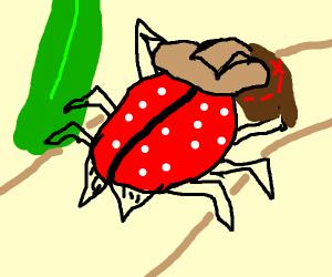 explorer lady bug