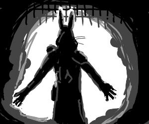 Rabbit Assassin's Creed
