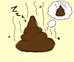 Poop has dream about poop