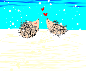 Hedgehogs in love in the snow