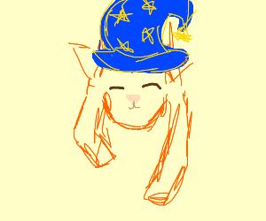 A wizard cat/fox