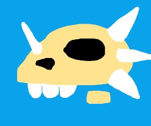 Head bone if a Dinosaur