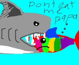 Sharks eating rainbow sharks