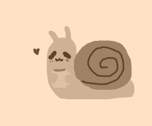 snail loves coffee