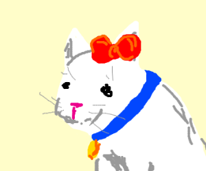 hello kitty with a realistic face