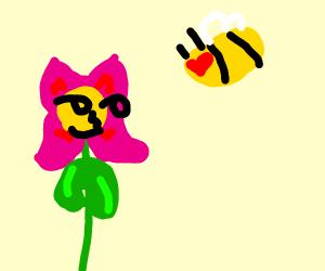 Flower Seduces a Bee