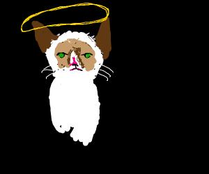 Angel Grumpy Cat