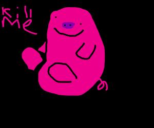 Fat Earless Pig