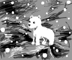 polar bear on a mountain